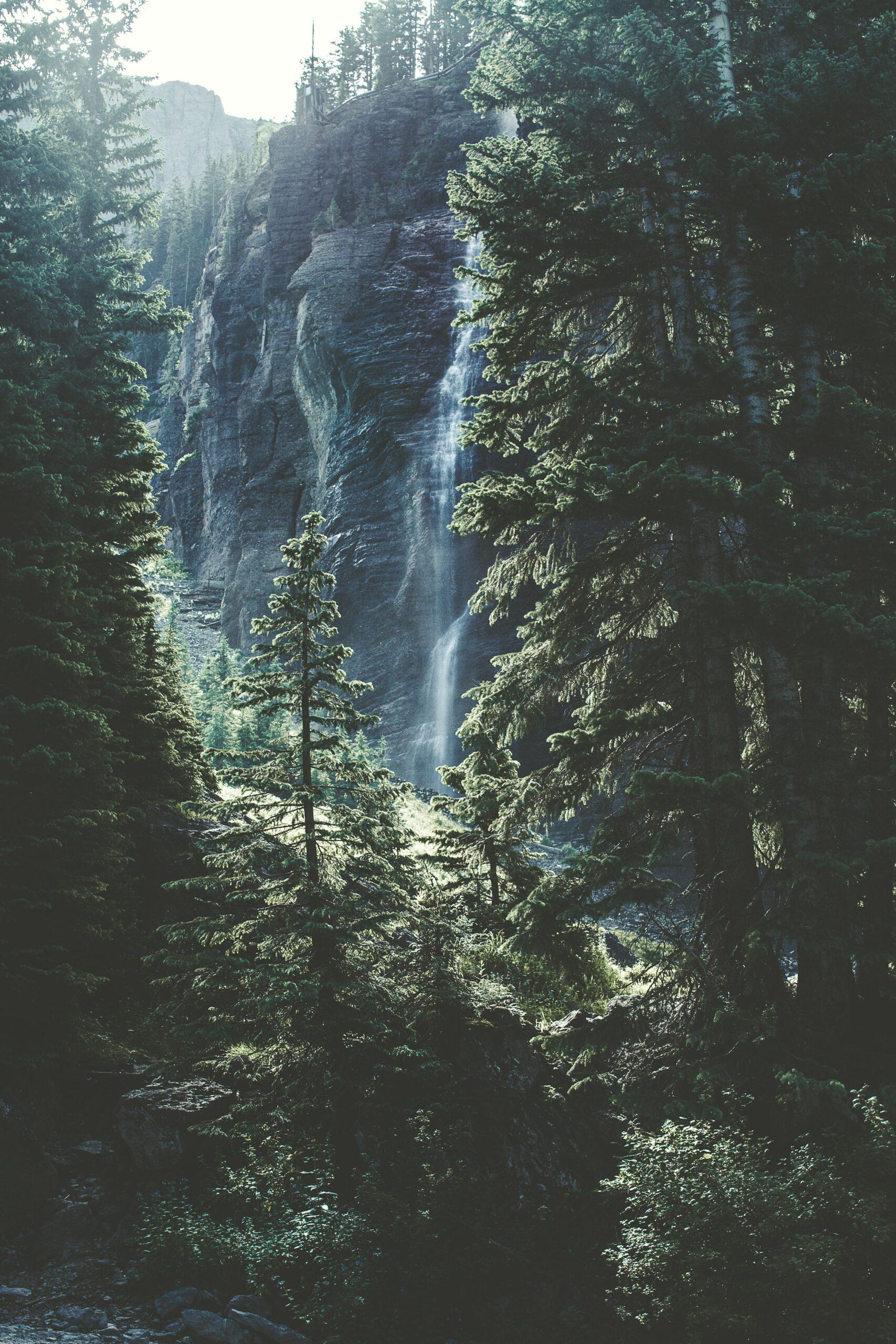 Afbeelding smartwallsolutions natuur