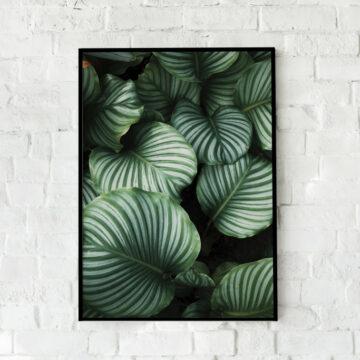 Akoestische panelen | Green leaves