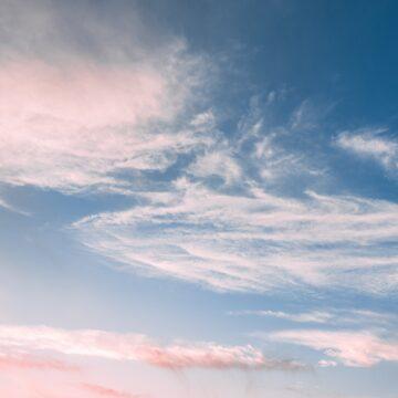 Akoestische Plafondpanelen | Lucht Blauw/Rose