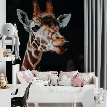 MultiTexPro - giraffe