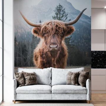 MultiTexPro - Schotse hooglander
