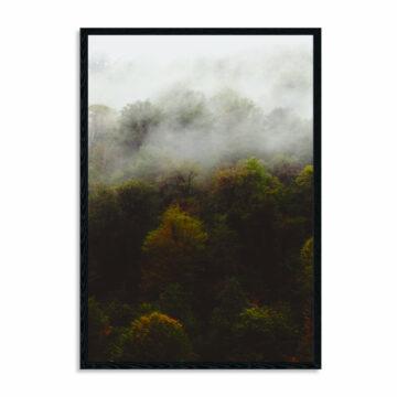 Akoestisch-paneel-misty-forrest.jpg