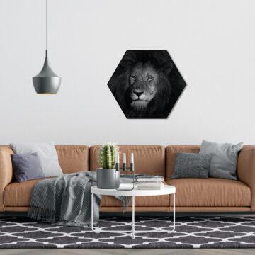 Hexagons Leeuw