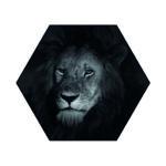 Hexagons Leeuw Enkel