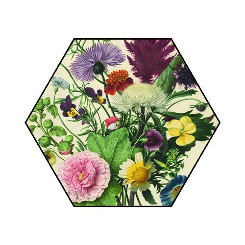 Akoestische Hexagon   Boeket bloemen