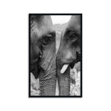 Wandpaneel | Black white Elephants